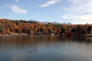 蓼科湖HP