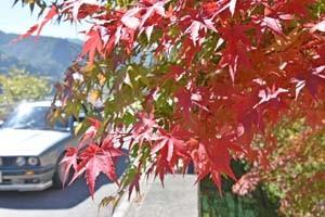もみじ湖の紅葉始まる171010